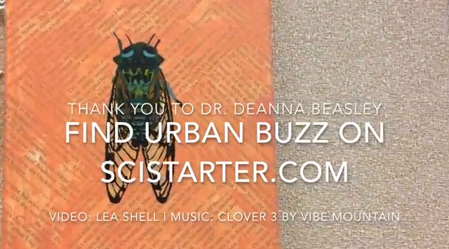 Urban buzz on SciStarter